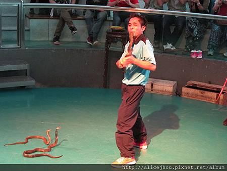 DAY5-毒蛇生態園區