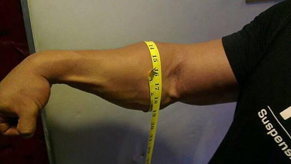 15吋半的前臂