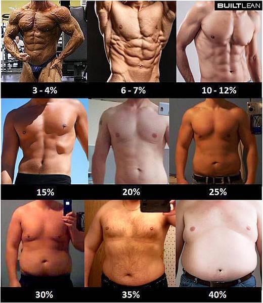 體脂肪示意圖男生