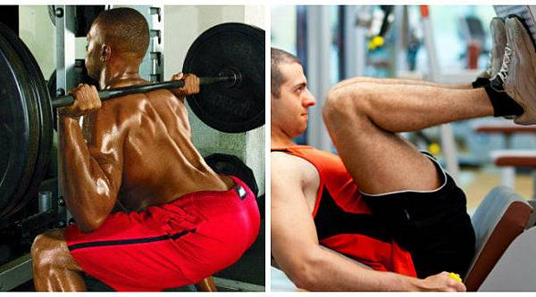 Squat vs Leg Press