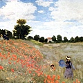 Poppies at Argenteuil.jpg