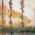 Poplars (Autumn).jpg