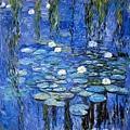 water-lilies-a-la-monet-joachim-g-pinkawa.jpg