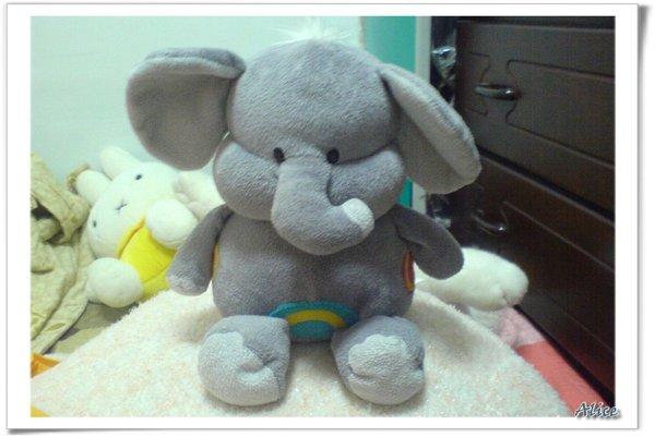 小象3.jpg