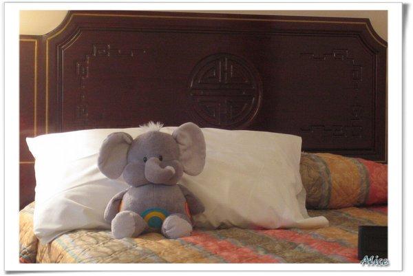 小象5.jpg