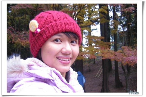 艾莉思@福壽山農場