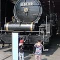 P1290572.JPG