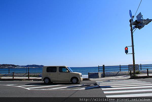 IMG_3620.JPG