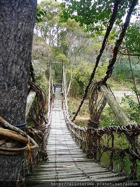 木製吊橋.JPG