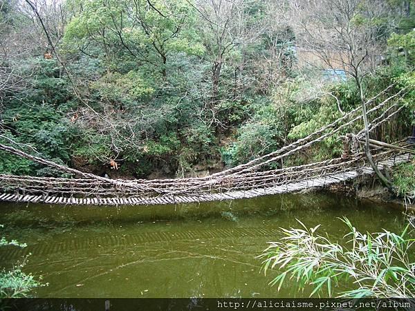 木製吊橋1.JPG