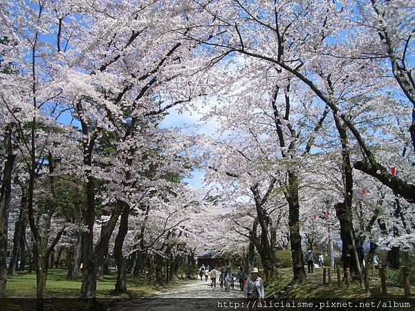秋田-千秋公園 (53).JPG