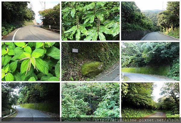 makephotogallery.net_1475242457.jpg