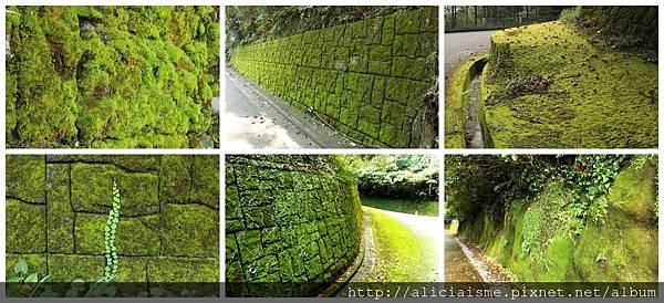 makephotogallery.net_1475242519.jpg