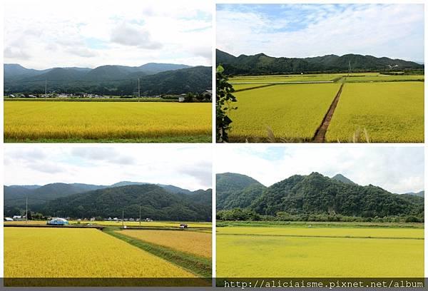 makephotogallery.net_1475463327.jpg