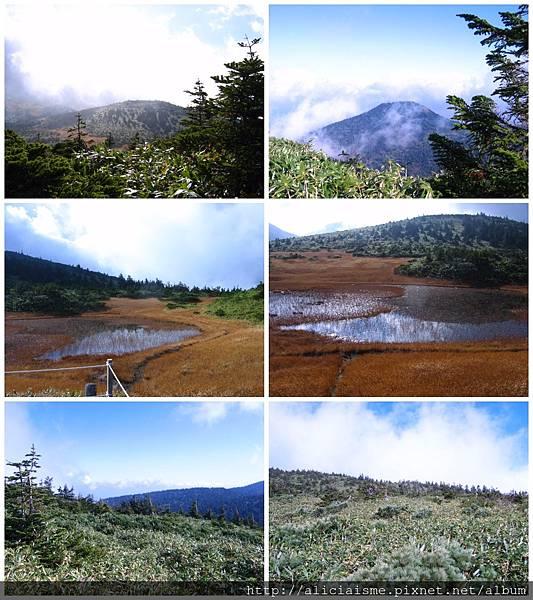 makephotogallery.net_1484881644.jpg