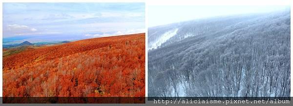 makephotogallery.net_1484882275.jpg