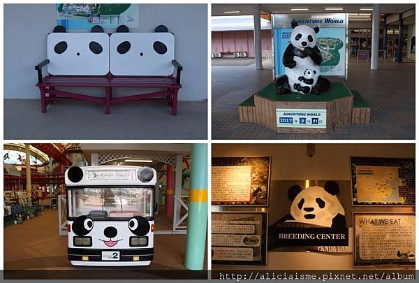 makephotogallery.net_1488272523.jpg