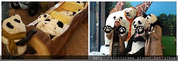 makephotogallery.net_1488273531.jpg