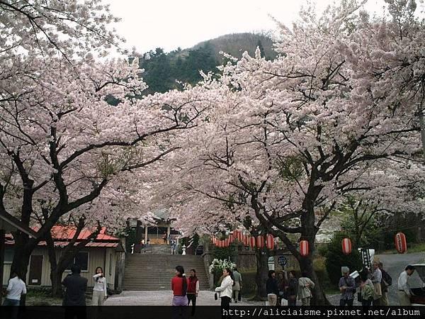 溫泉神社1.JPG