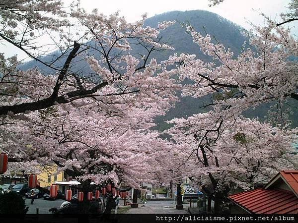 溫泉神社8.JPG
