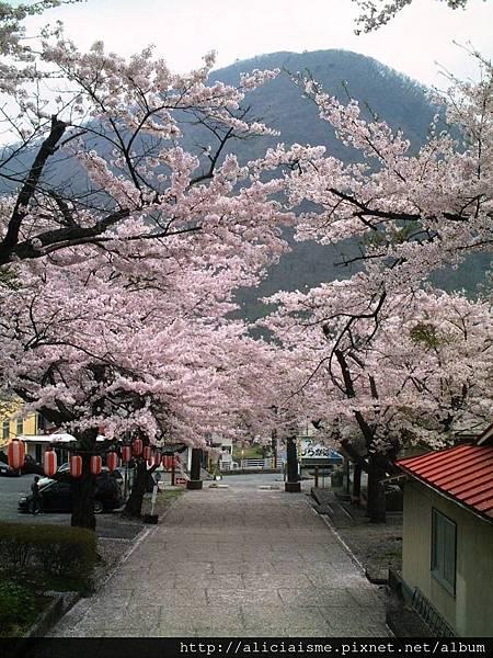 溫泉神社7.JPG