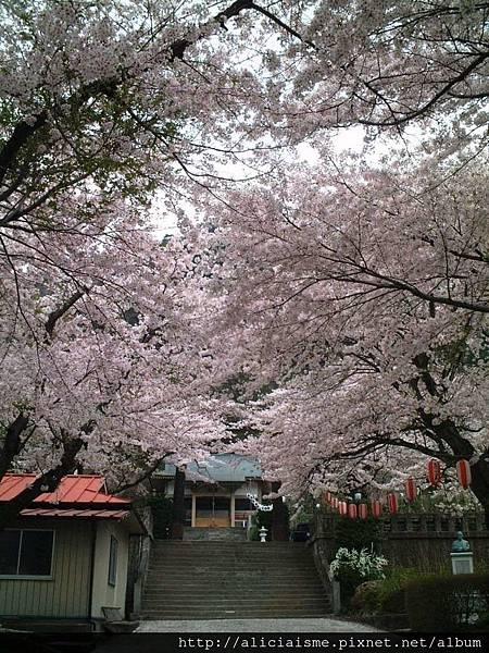 溫泉神社13.JPG
