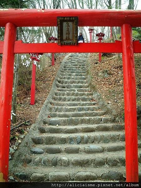 溫泉神社-丸山山頂.JPG