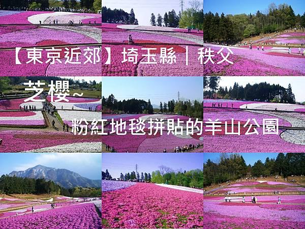 makephotogallery.net_1493607912.jpg