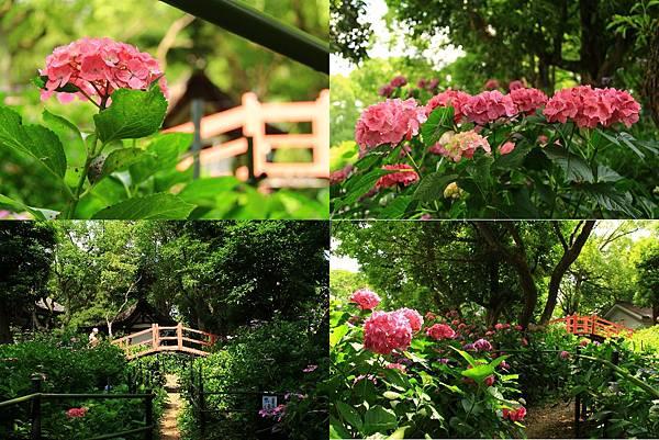 makephotogallery.net_1496374806.jpg