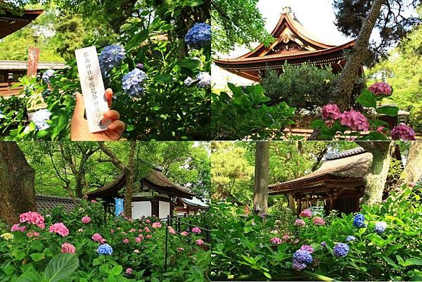 makephotogallery.net_1496375288.jpg