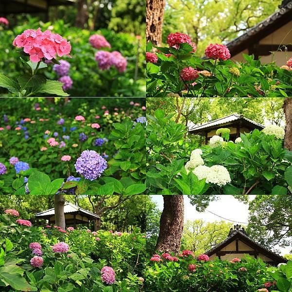 makephotogallery.net_1496375888.jpg