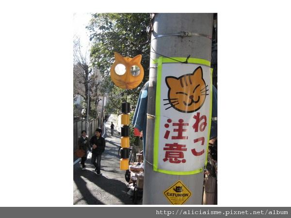 20110118_121210_谷根千貓注意.jpg