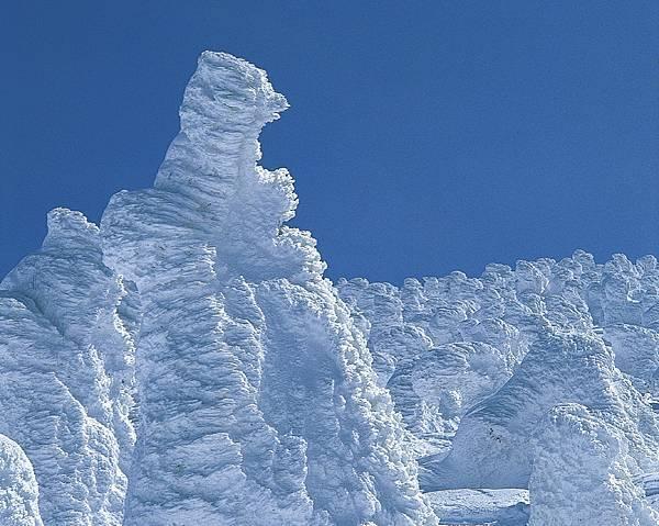 藏王樹冰2.jpg