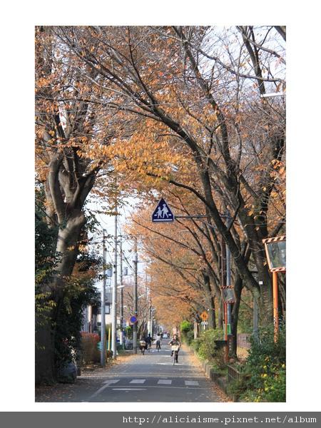 私旅行@東京_集地咖啡之攝影小展