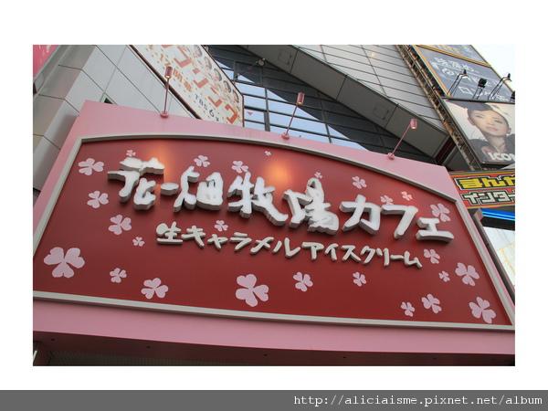 20100926_165543_IMG_2591.jpg