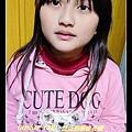 nEO_IMG_P1020080.jpg