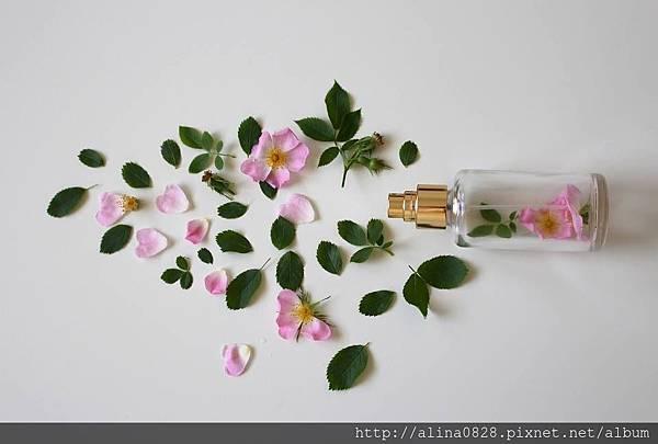 簡易DIY自製精油香水
