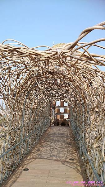 『嘉義』嘉聚.阿里山林業藝術創作.森林之歌