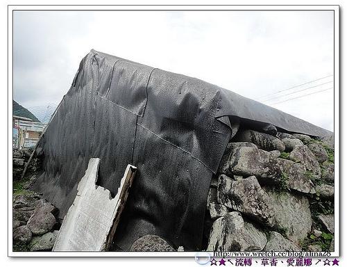 『2010奔放蘭嶼』野銀部落‧地下屋‧夜觀角鴞