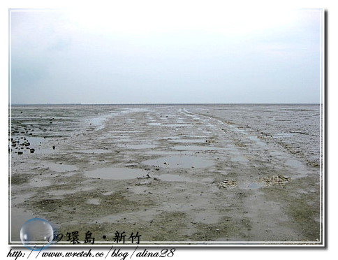 『2009環島行』新竹‧香山濕地