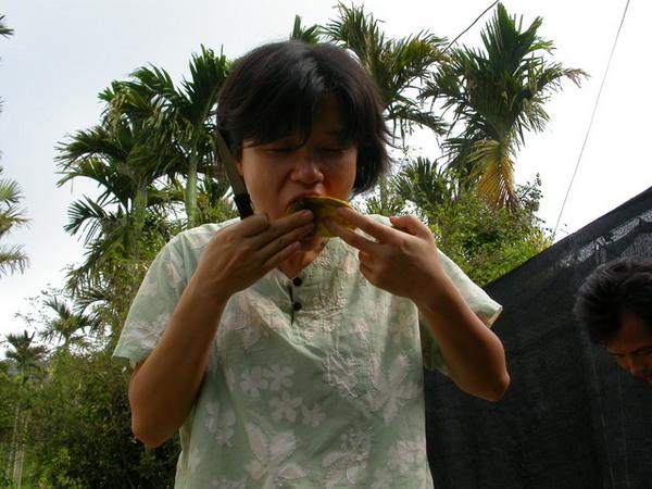 土芒果的滋味060702 (3).JPG