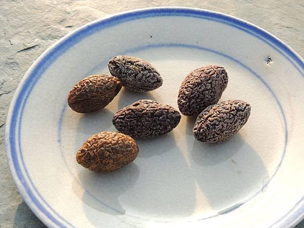 鹹橄欖與陳年鹹橄欖