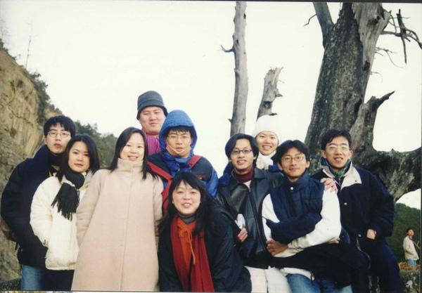 塔塔加  夫妻樹