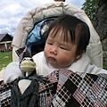 2009-06-07 24_0247Gosausee.JPG
