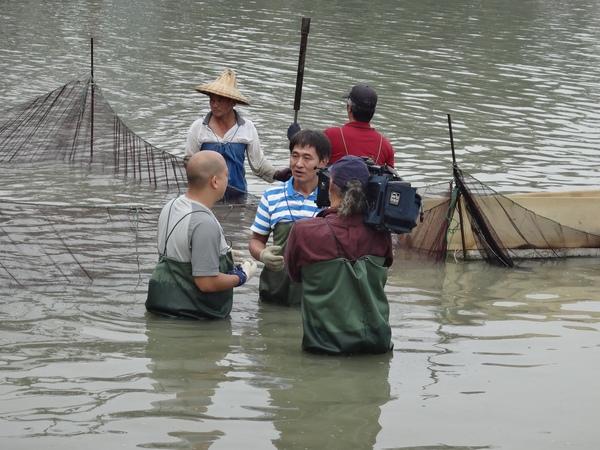 鱸鰻養殖場1030109-1
