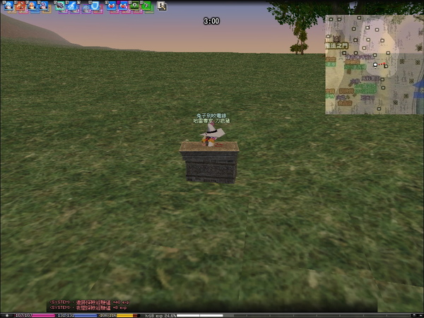 mabinogi_2009_06_17_004.jpg