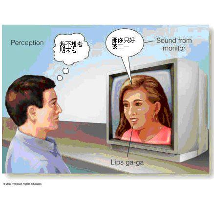 知覺心理學.bmp