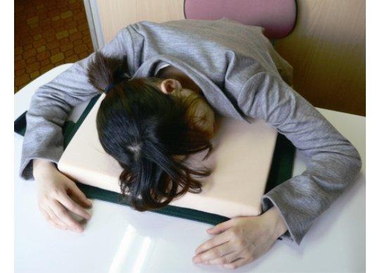 dictionary-desk-pillow-sleep-work-book-1