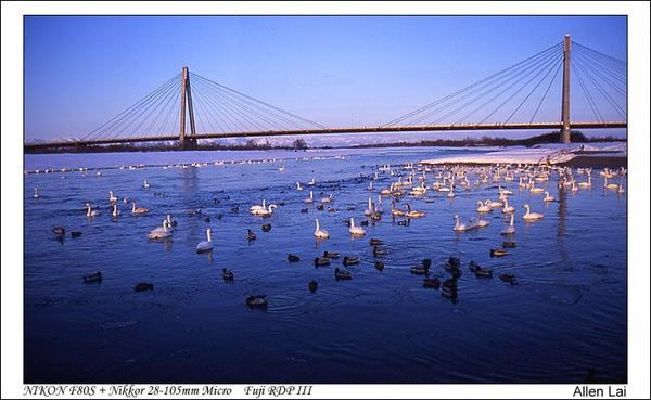 北海道的十勝川