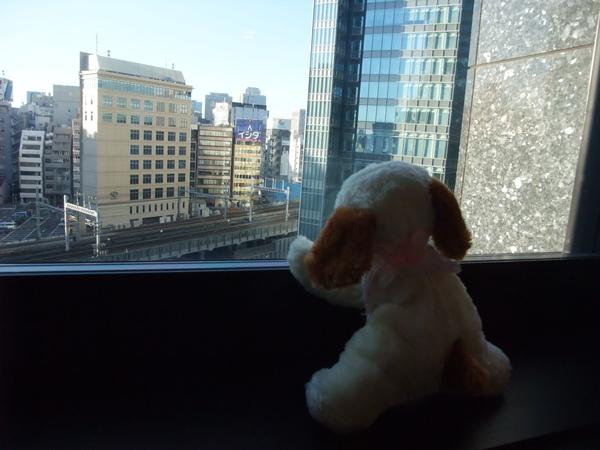 TOKYO0608.JPG